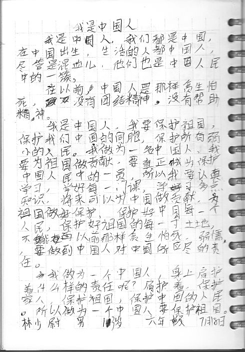 我是中国人 nlp夏令营7月19日